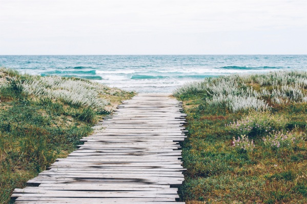 landing-stage-sea-nature-beach